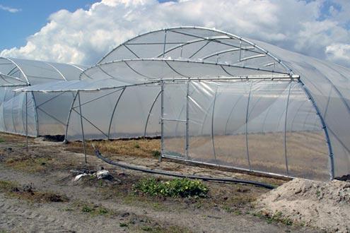 Invernaderos modelo Reylux R15