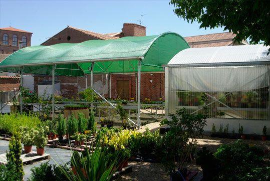 Umbráculos Umbralux de techo plano y curvo