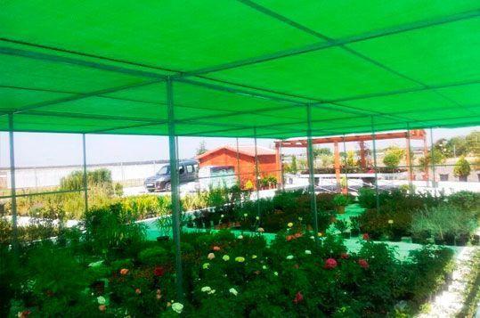 Umbráculo plano Umbralux con malla de sombreo verde